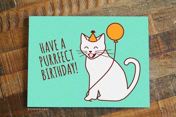 cute birthday card purrfect birthday cat