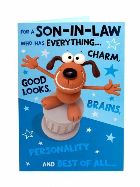 son in law humour birthday greeting card funny joke