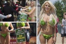 localhost_2015candelaestereo1_images_contenido_noticias_untitled folder 2_bikini7