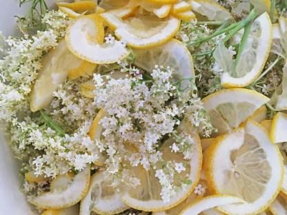 fläder, citron, flädersaft