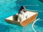 Stirling DOES like his new boat!