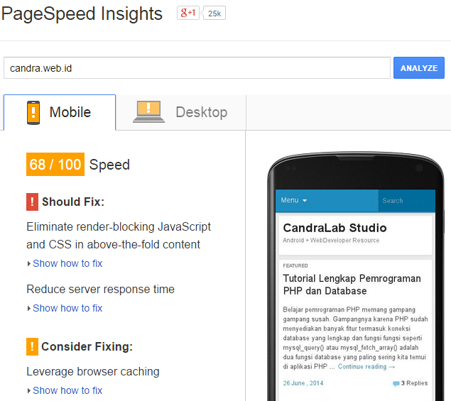 Tampilan hasil pagespeed test