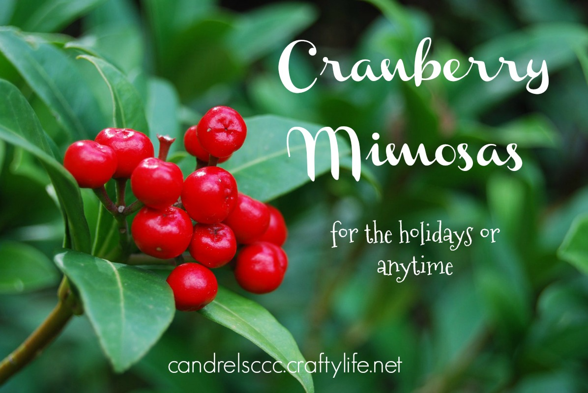 Cranberry Mimosa Cocktails for the Holidays