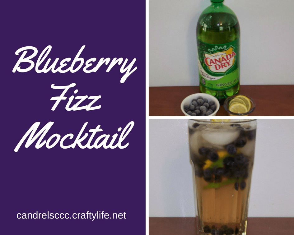 Refreshing Blueberry Fizz Mocktail