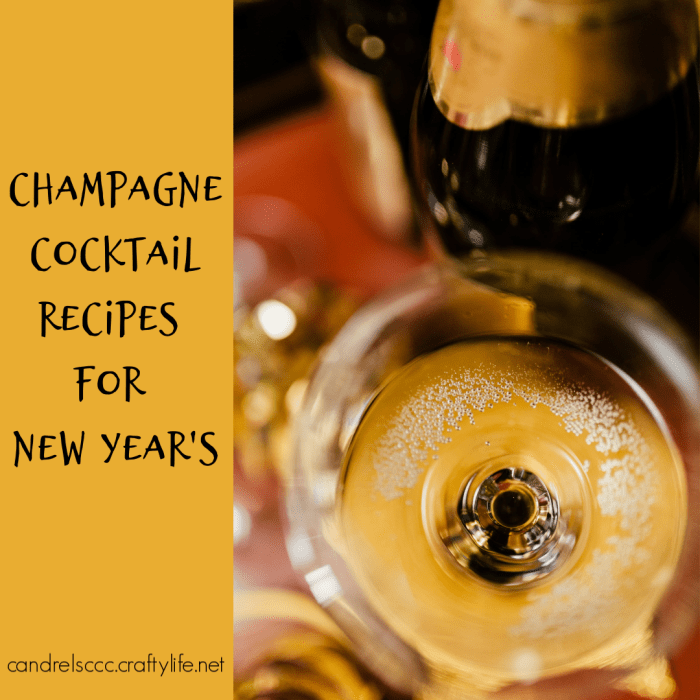 Champagne Cocktail Recipes for New Year's Eve