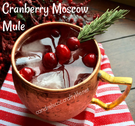 A Holiday Twist: The Cranberry Moscow Mule