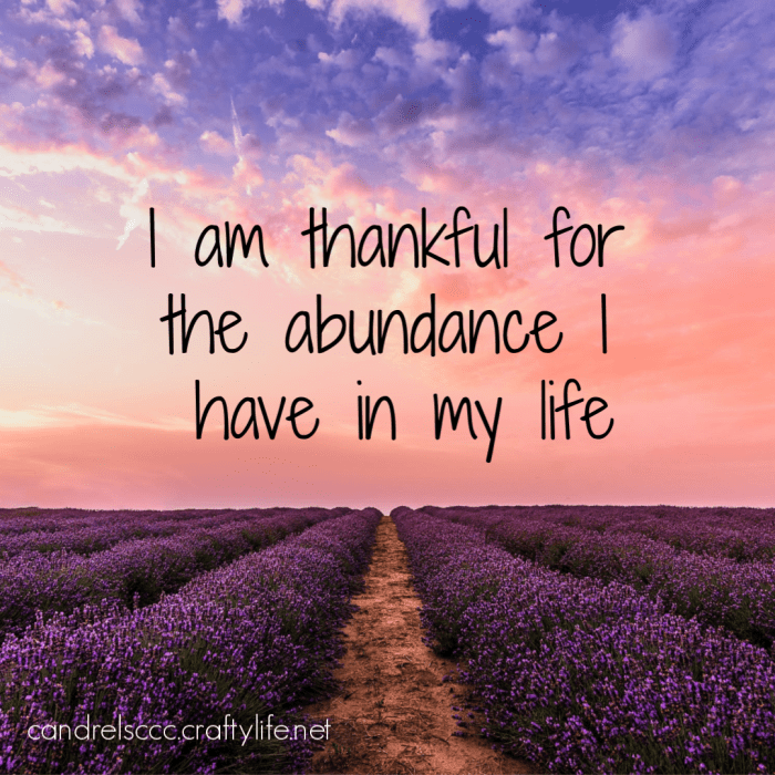 Daily Affirmation February 9