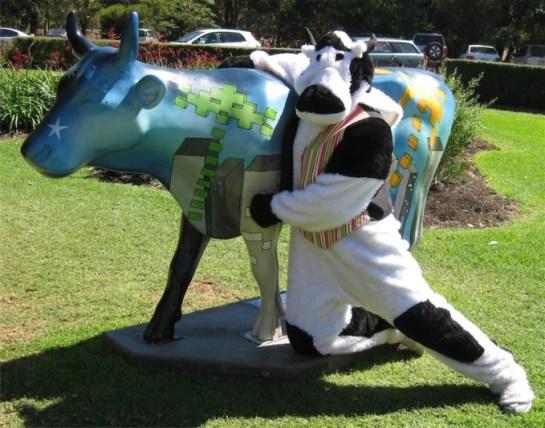 cowplus