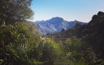 Barranc del Pas