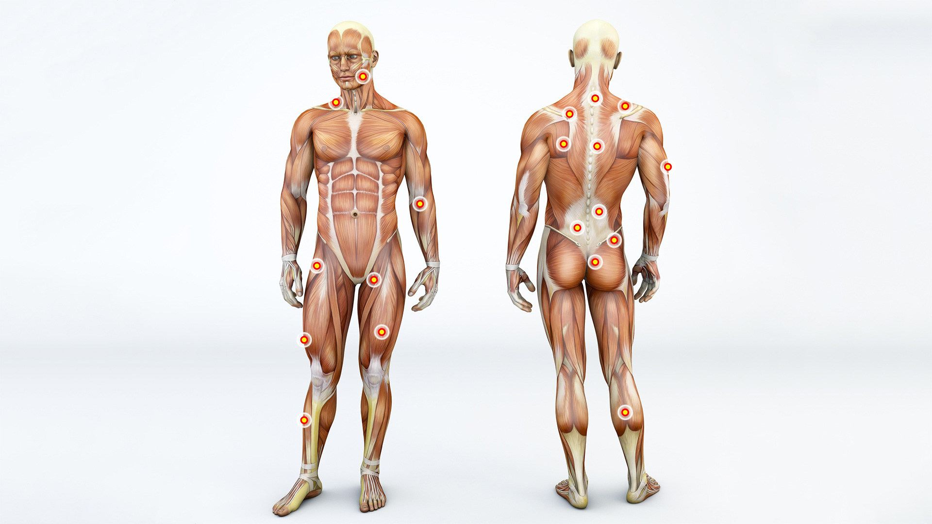 fascia movement assessment