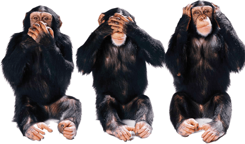 https://i2.wp.com/www.canhr.org/images/2015.08/Hear-No-Evil-See-No-Evil-Speak-No-Evil.png