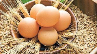 yumurtanin-taze-oldugu-nasil-anlasilir-4