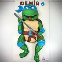 10.2015 Demir - Ninja Turtle