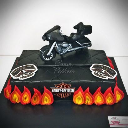 Harley Davidson Touring Pastası