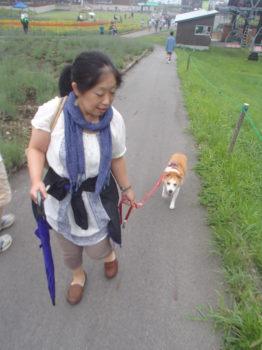 ママさんと坂道を登るひな