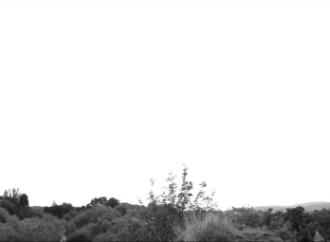 gareth-evans-short-film-600x255