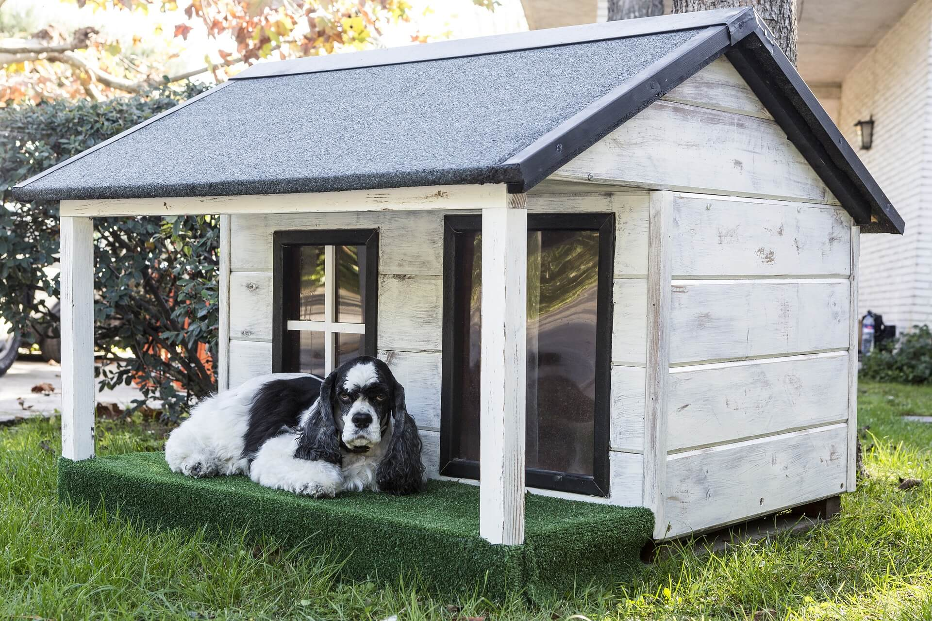 comment construire une niche pour chien