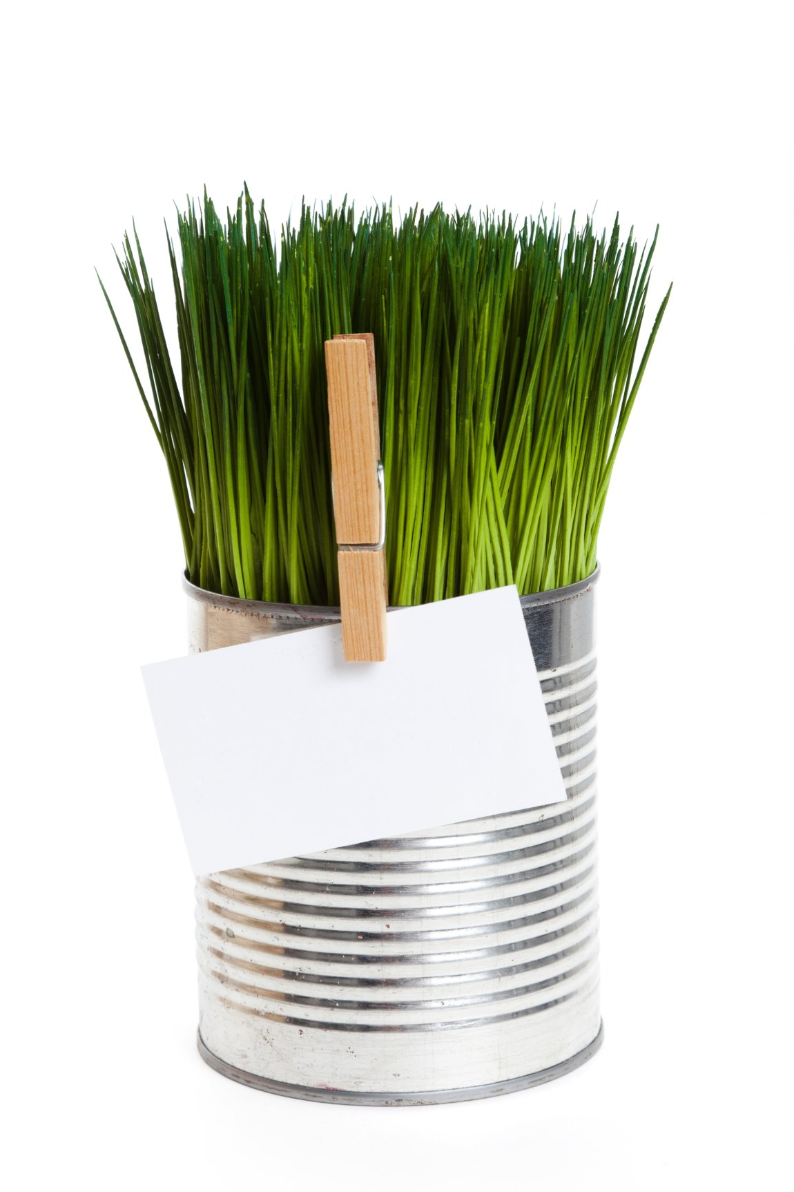 13184218 - green grass and metal can, concept of environmental conservation
