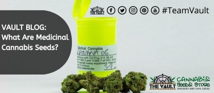 The Vault Cannabis Seed StoreMedicinal Seeds