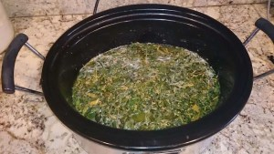 Weed butter infusing in the slow cooker