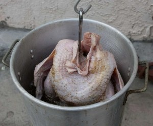 Carefully lower the infused turkey into the hot oil.
