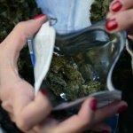 ¿Cómo hará el gobierno para habilitar nuevos lugares de venta de cannabis sin violar la ley?