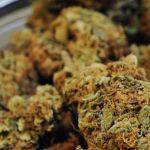 La agencia de medicamentos de EEUU advierte a varias compañías que dejen de anunciar que la marihuana cura el cáncer