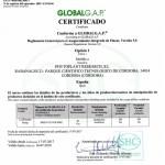 COMUNICADO: Primera empresa española en obtener la certificación GLOBALG.A.P para el cultivo de Cannabis medicinal
