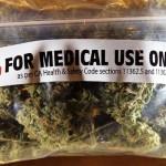 Punta del Este será sede de conferencia internacional sobre cannabis medicinal