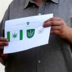Una región de Estonia exhibirá en su bandera una hoja de cannabis por petición popular