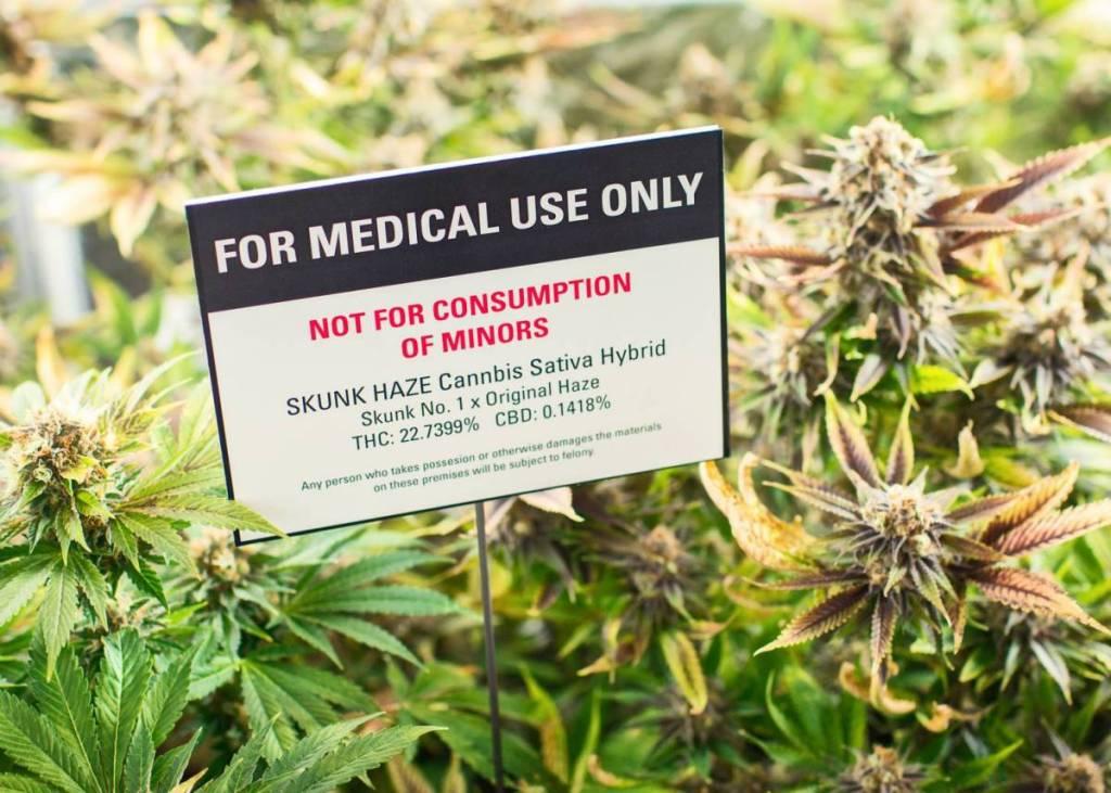 Health Canada Medical Marijuana Facts