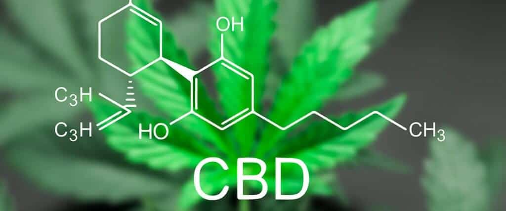 what CBD is made of