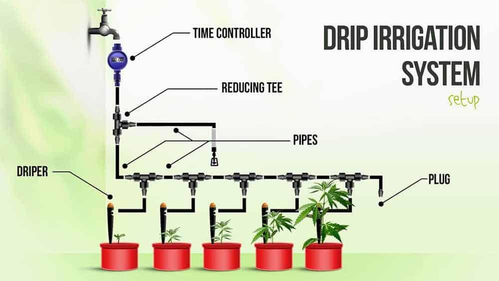 Diagram of Drip Irrigation Hydroponic System