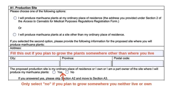 Example Canada marijuana license form production site