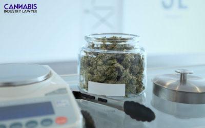 Ohio Marijuana Dispensary License Application