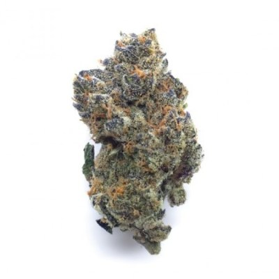 Strains Related to Platinum Cookies - Unknown Breeder