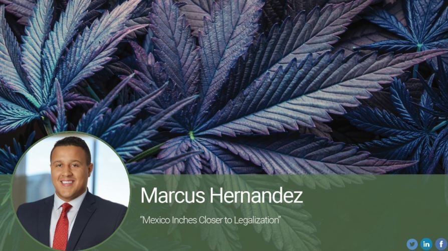 Mexico Inches Closer to Legalization