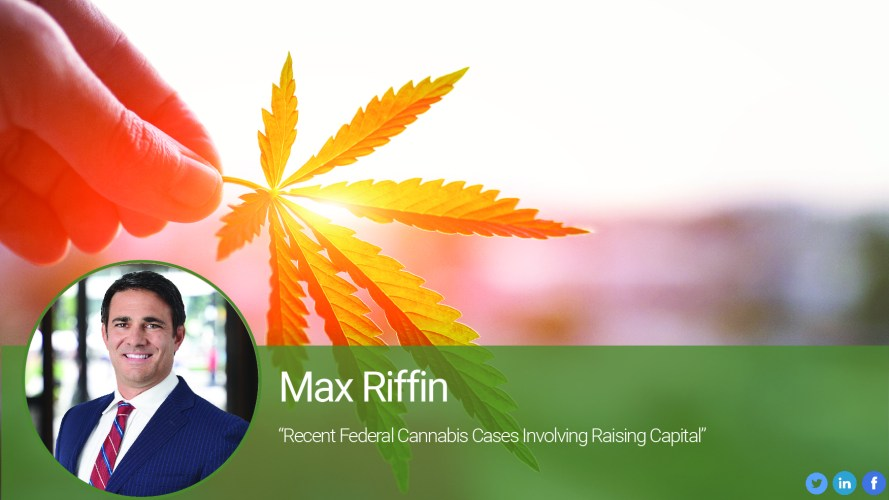 Recent Federal Cannabis Cases Involving Raising Capital