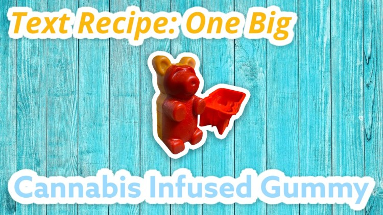 One Giant Infused Gummy Bear!