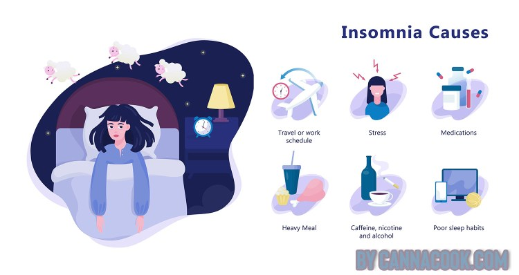 The Causes of Insomnia