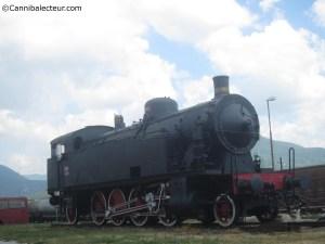 Philipe Saimbert - Le Fossile d'acier