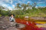 Caño Cristales, perfecto para hacer fotografía de naturaleza / Fotografía por Mario Carvajal