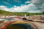 Viajeros contemplan a Caño Cristales en Los Ochos / Fotografía por Mario Carvajal