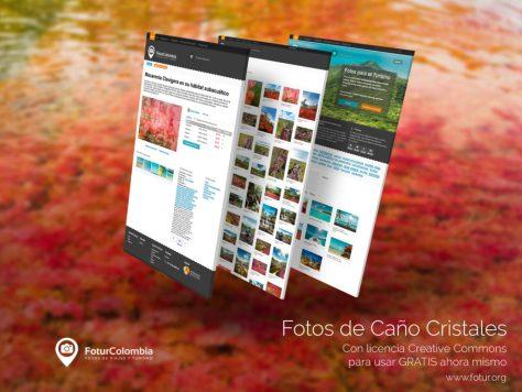 Fotur: la plataforma para descargar fotos gratis para promocionar el turismo colombiano