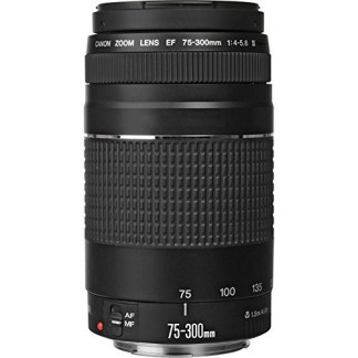 Canon EF 75-300mm f/4-5.6 III Telephoto Zoom Lens for Canon EOS 7D, 60D, EOS 70D Rebel SL1, T1i, T2i, T3, T3i, T4i, T5, T5i, XS, XSi, XT & XTi Digital SLR Cameras with Accessories