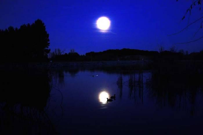 Resultado de imagen de lago de noche