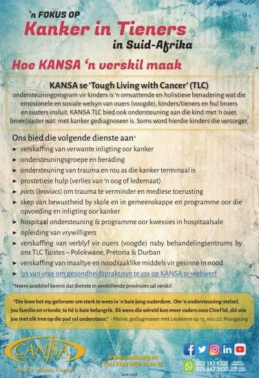 KANSA-Fokus-op-Tieners-September-2019-Infografieke-Afrikaans-6