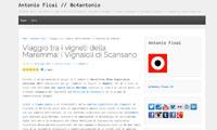 antonio-ficai-morellino-wine-experience