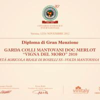 DIPLOMI GRAN MENZIONE176