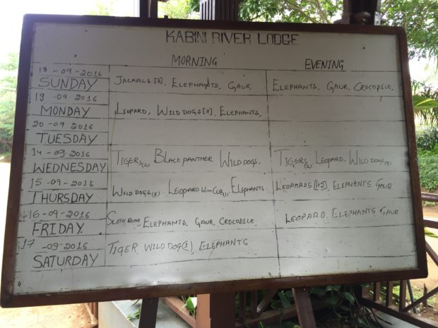 Wildlife sightings at Kabini River Lodge in Nagarhole National Park, India